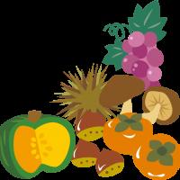 食欲の秋🍁 旬の秋野菜で夏の疲れをリセットしましょう!